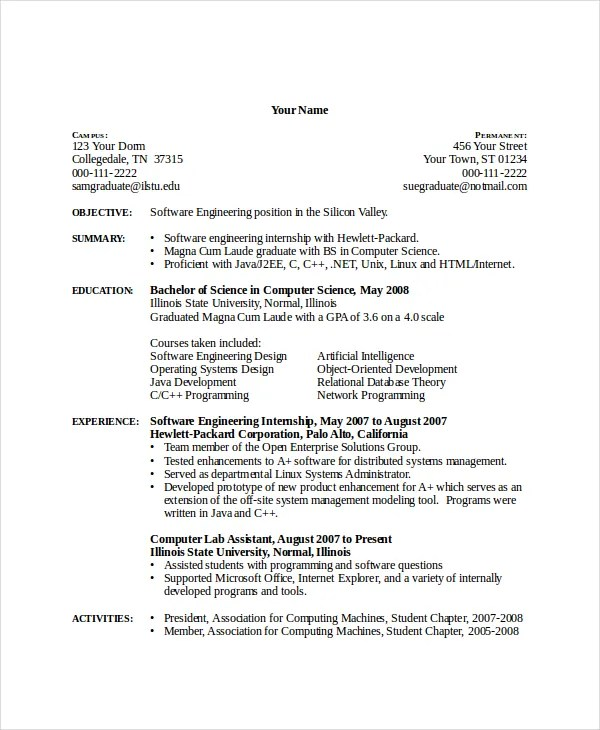Summary Resume Skills Computer Example