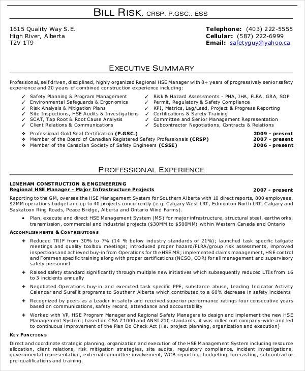 Resume Example Summary. Executive Summary Examples Free Amp