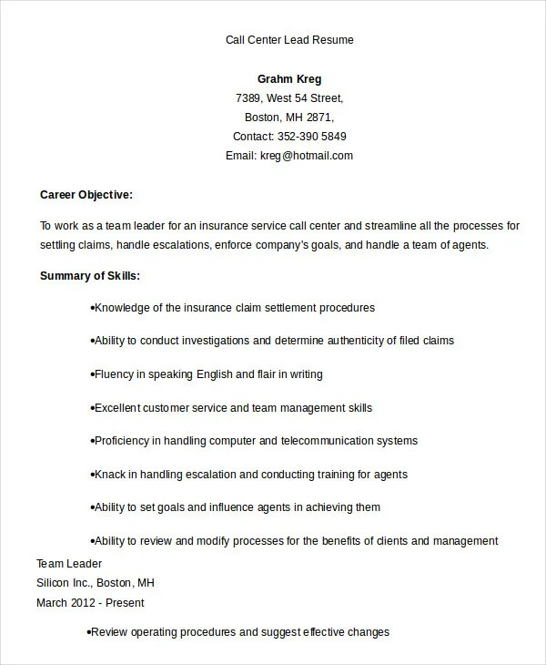 Resume Facets Configuration Manager IT Project Manager Resume Example  Team Lead Resume