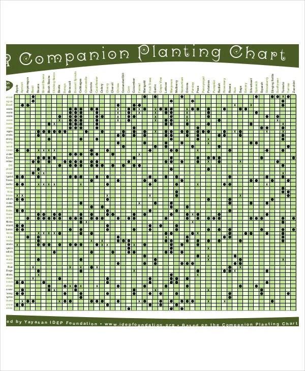 Growth Printable Template Chart