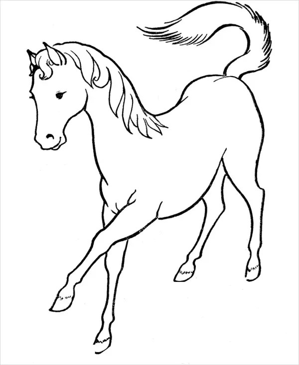 realistic horse coloring pages # 41
