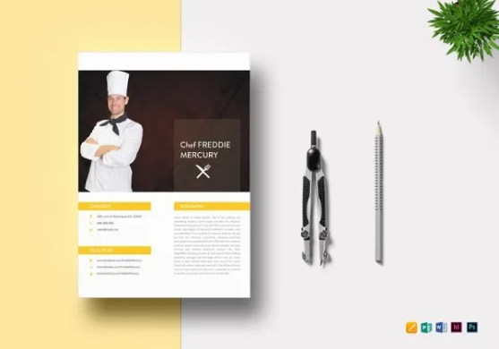 16  Experienced Resume Format Templates   PDF  DOC   Free   Premium     Experienced Chef Resume Template