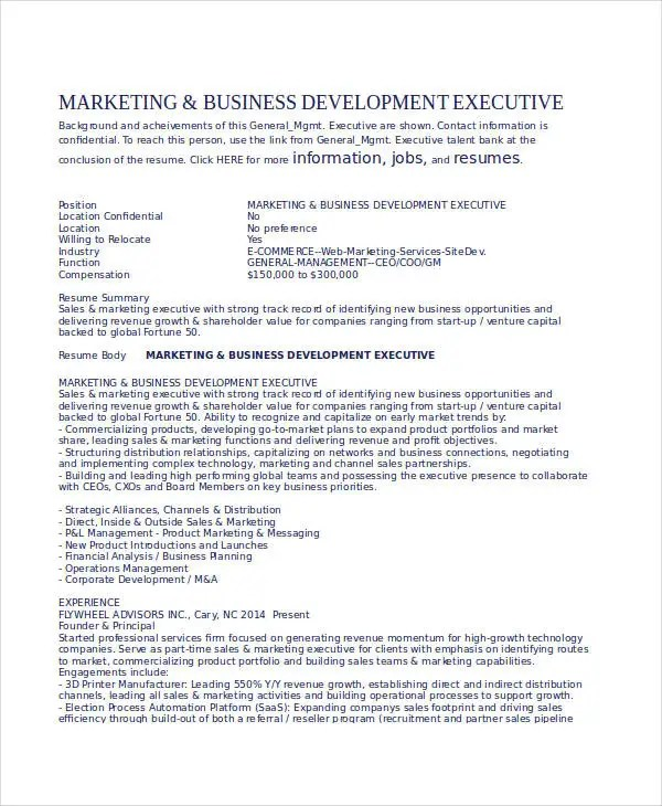 24 Printable Executive Resume Templates PDF DOC Free Amp Premium Templates