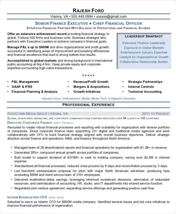 Finance Executive Resume Resume Sample