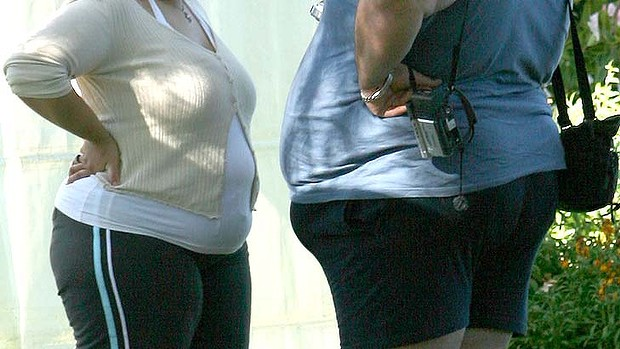 Gene research: Tests will focus on the Y6 gene and the extent that it determines the amount of fat stored in the body.