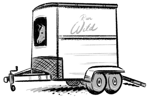 Unhappy horse in a trailer