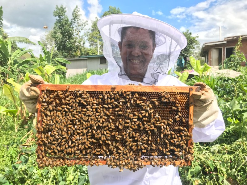 Man holds up section from beehive
