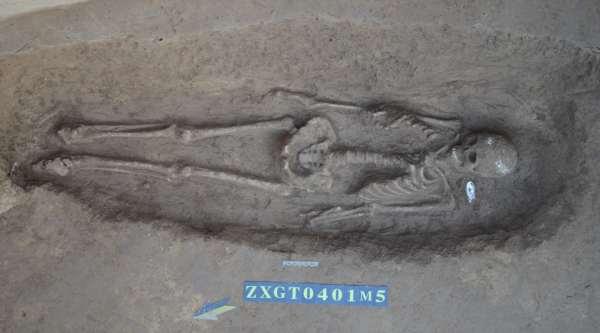 Excavation of human skeleton