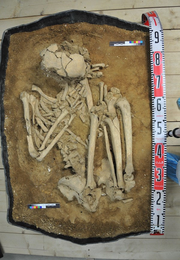 Folded up ancient skeleton being excavated