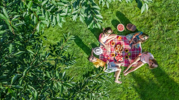 Aerial view of a picnic in a park.