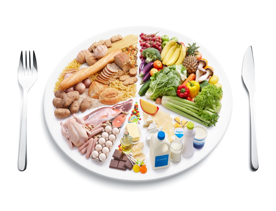 A plate showing the different food groups.