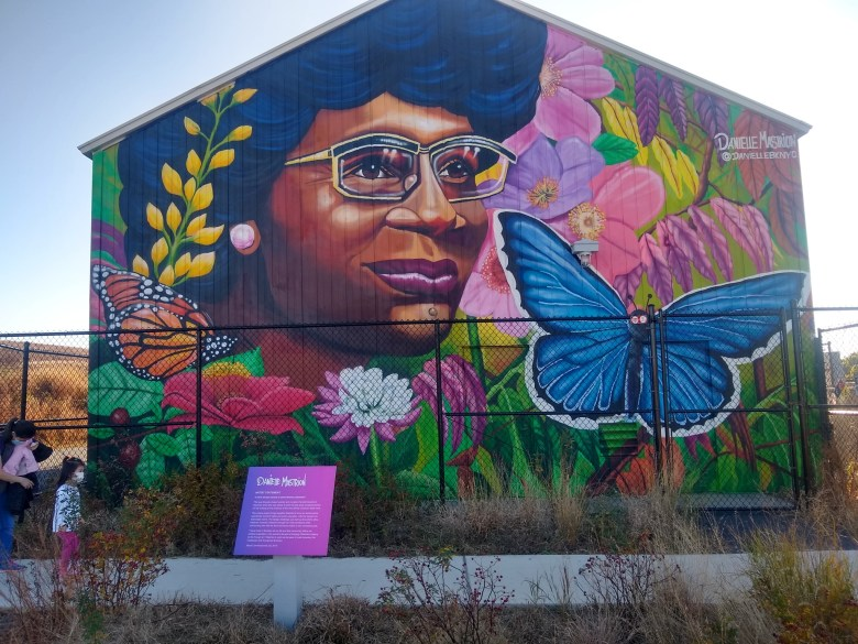 Colorful mural of Chisholm with butterflies and flowers
