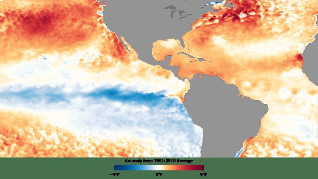 Sea surface temperature map