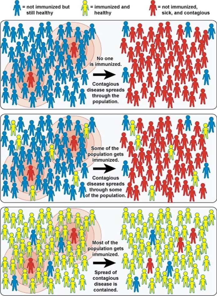 Funcionamiento de la Inmunidad de Rebaño