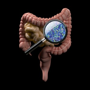 Fecal microbial transplantation helps cancer patients respond to immunotherapy and shrink tumors