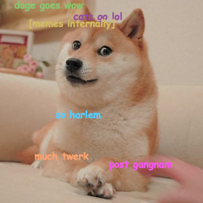 The Year Of The Doge 2013 S Top Meme Owes It All To Lolcats