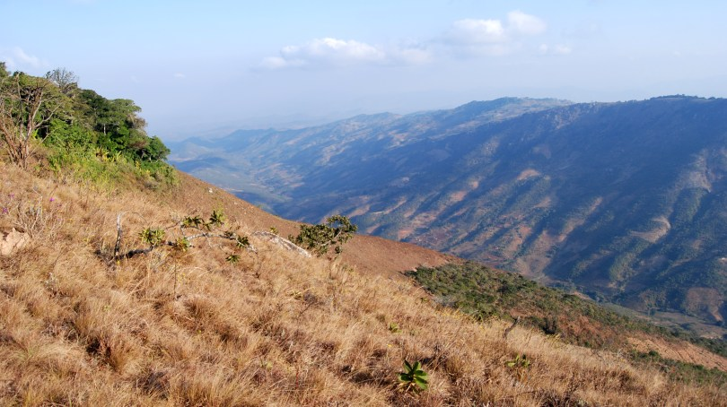 Malawi landscape with patches of forest high in the hills