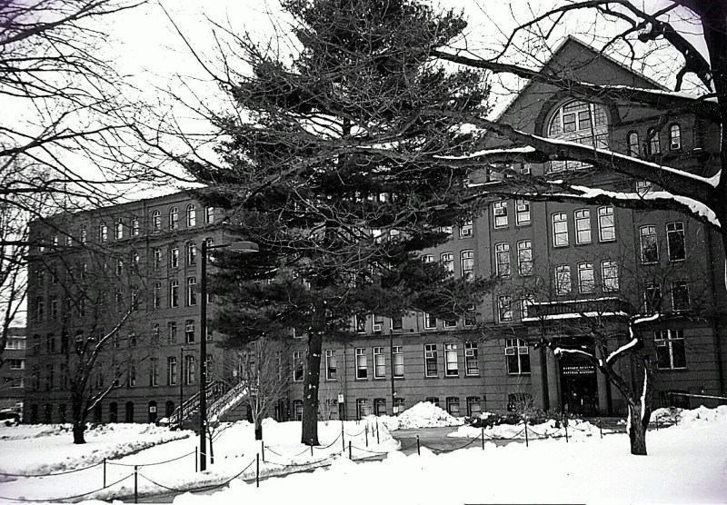Picture of a building in snow