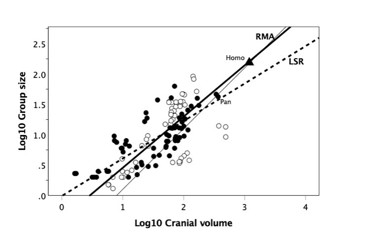 A graph showing different results for RMA and LSR statistical analysis