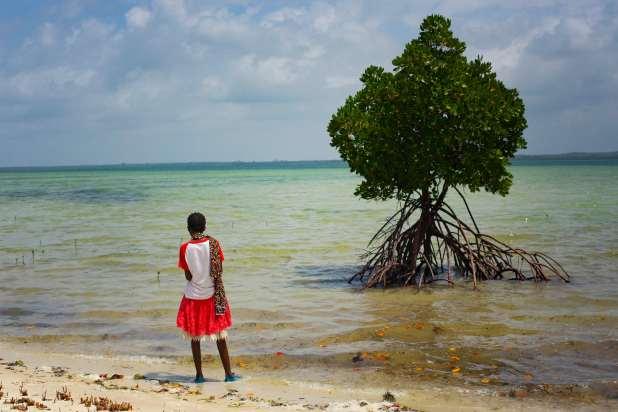 Girl looks into ocean beside a tree