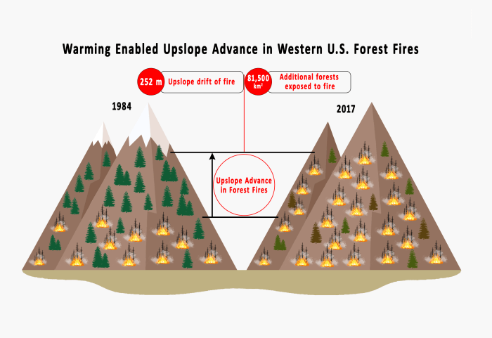 Illustration of two mountains showing fires higher, less snow and more dead trees