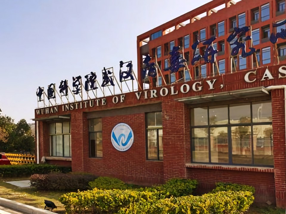 The outside of the Wuhan Institute of Virology