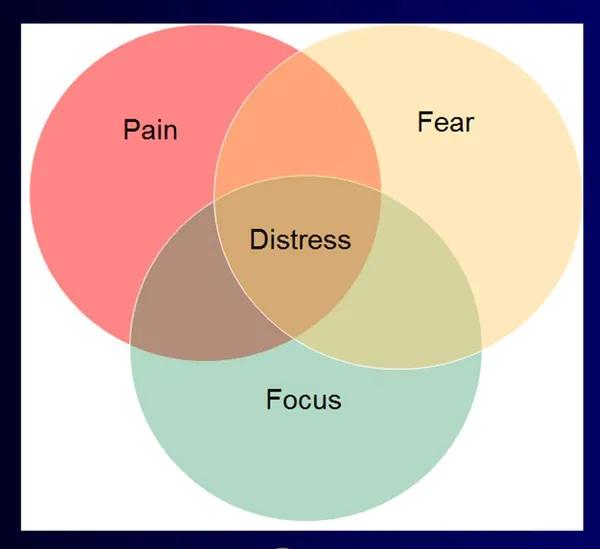 Venn diagram showing the intersection of pain, fear, and focus is distress