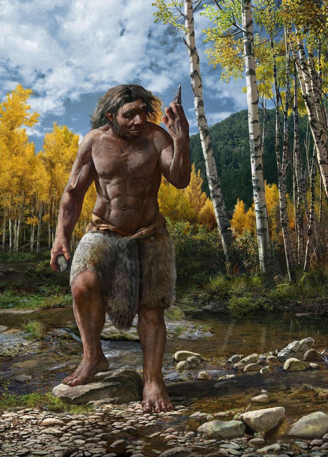 Artist's impression of Homo longi.