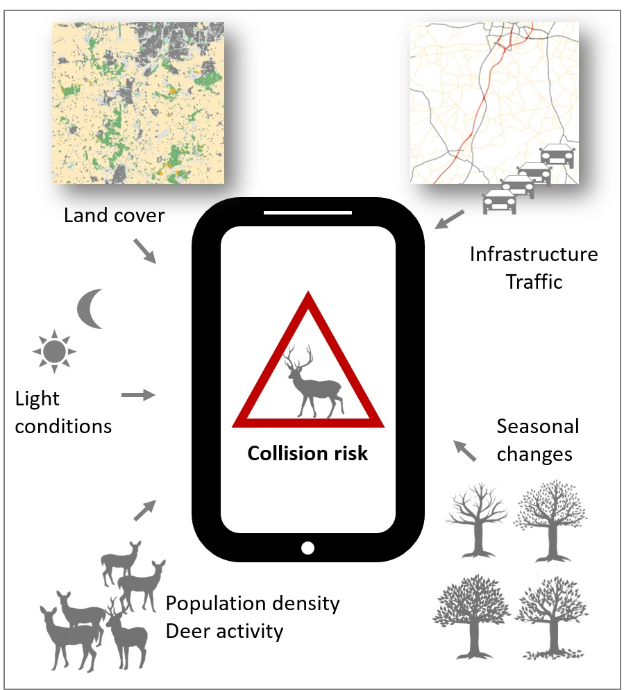 A tablet with 'collision risk' on it and different factors like 'land cover' pointing to it.