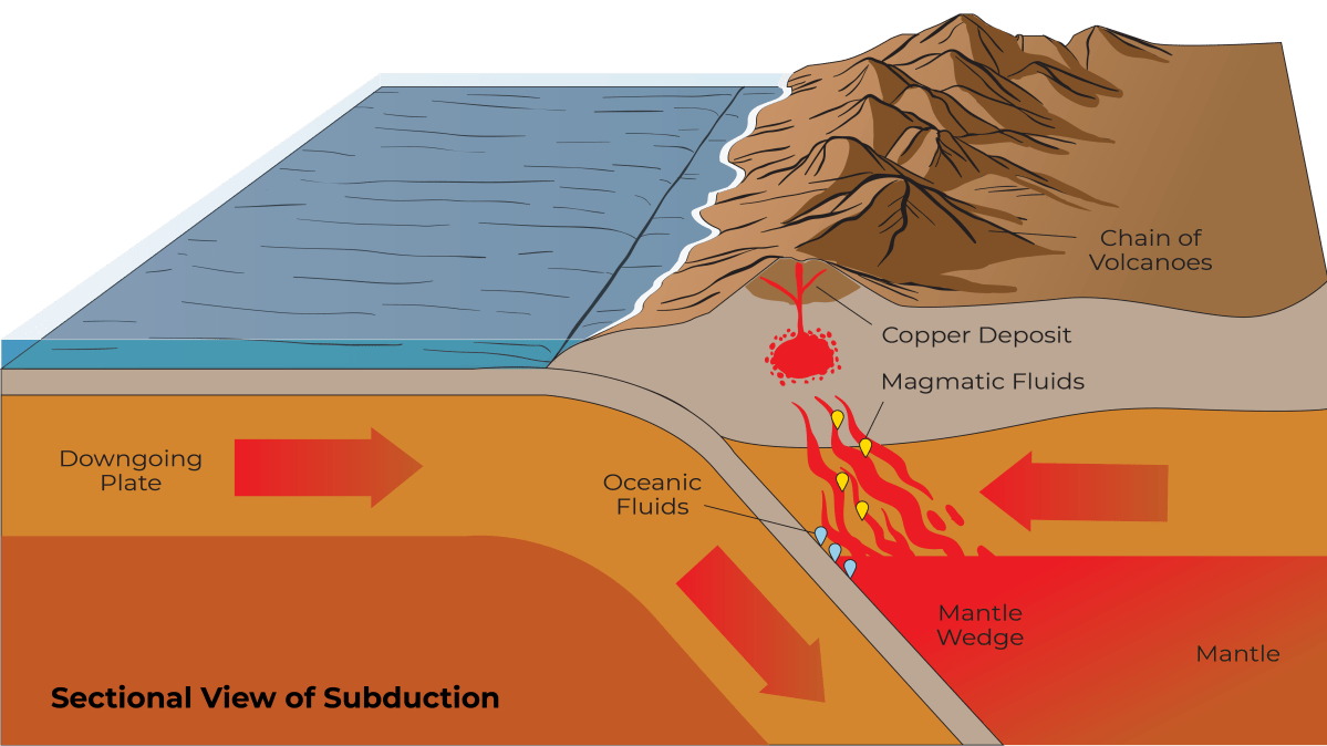Cross section of the Earth showing one tectonic plate going under the other, creative volcanism and copper deposits directly above