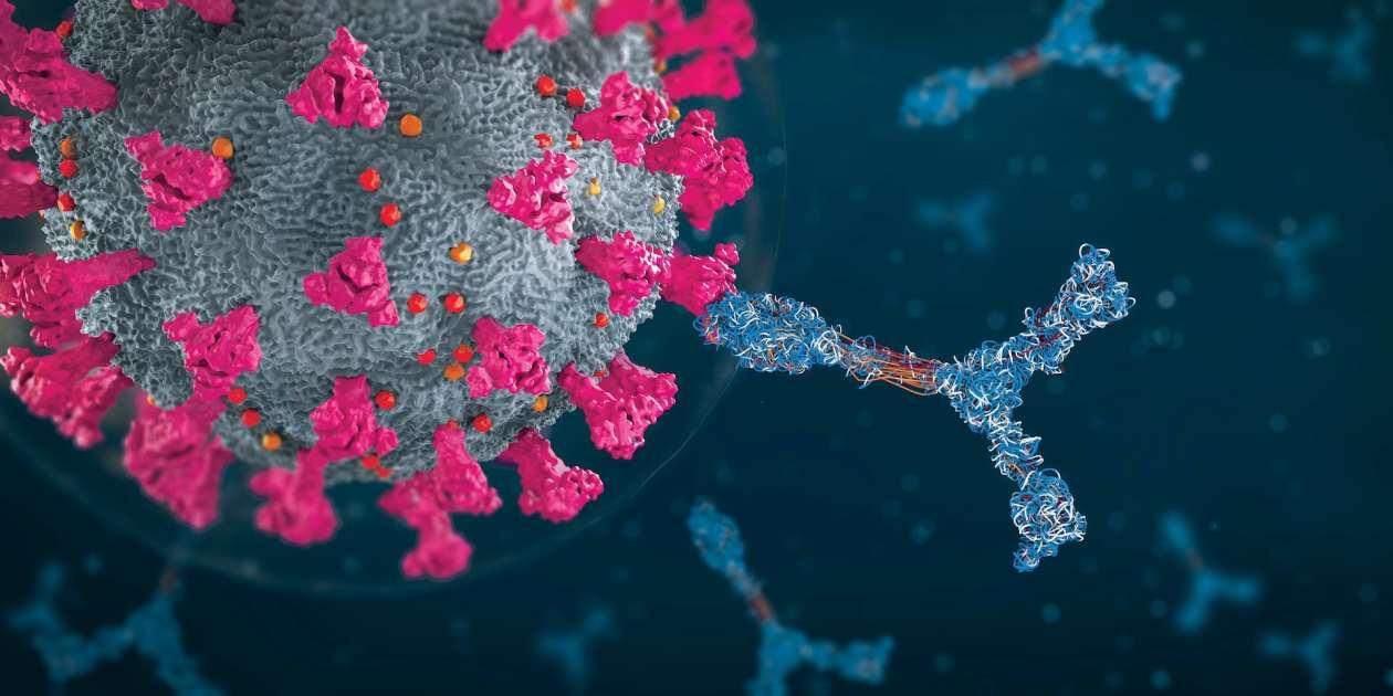 Illustration of antibodies attacking coronavirus particle