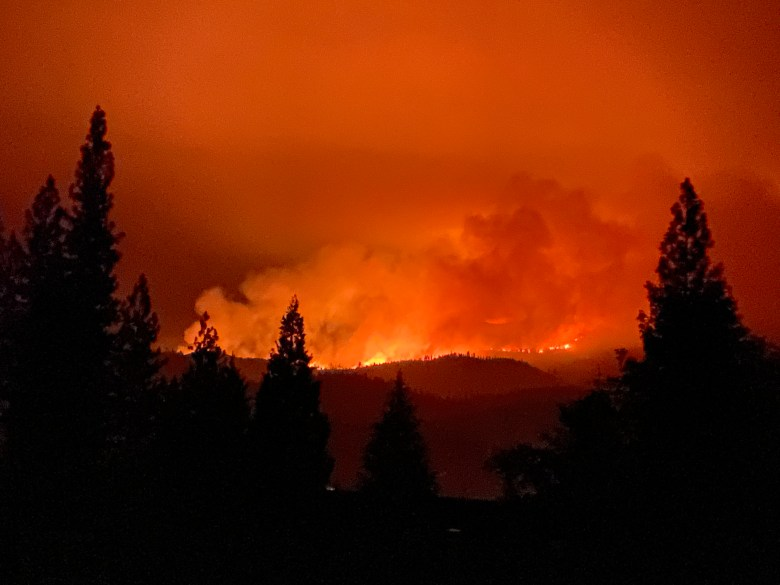 A line of fire on a hillside with trees silhouetted.