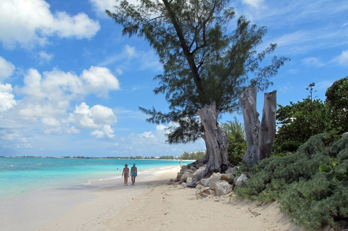 Two tourists walk on a white sand beach surrounded by trees and bushes.