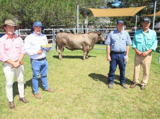 With the $7000 top-priced Murray Grey bull, Tullibardine Q116, was Elders auctioneer James Culleton, Virbac agent Tony Murdoch, Tullibardine stud co-principal Alastair Murray, of Albany, and Nutrien Livestock southern manager Bob Pumphrey.