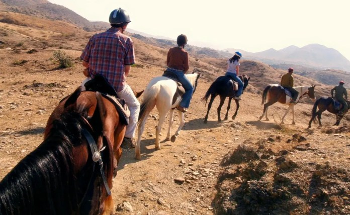 Horse Safari in Pushkar.