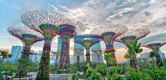 Image result for Gardens By The Bay: For Nature Lovers