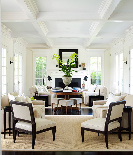 Decorating Ideas  Elegant Living Rooms   Traditional Home Lovely and Light Living Room