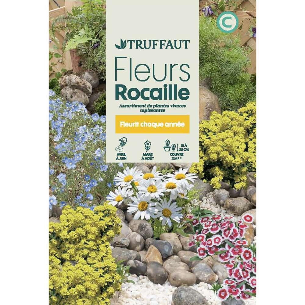 fleurs vivaces en melange massifs et rocailles grand sachet