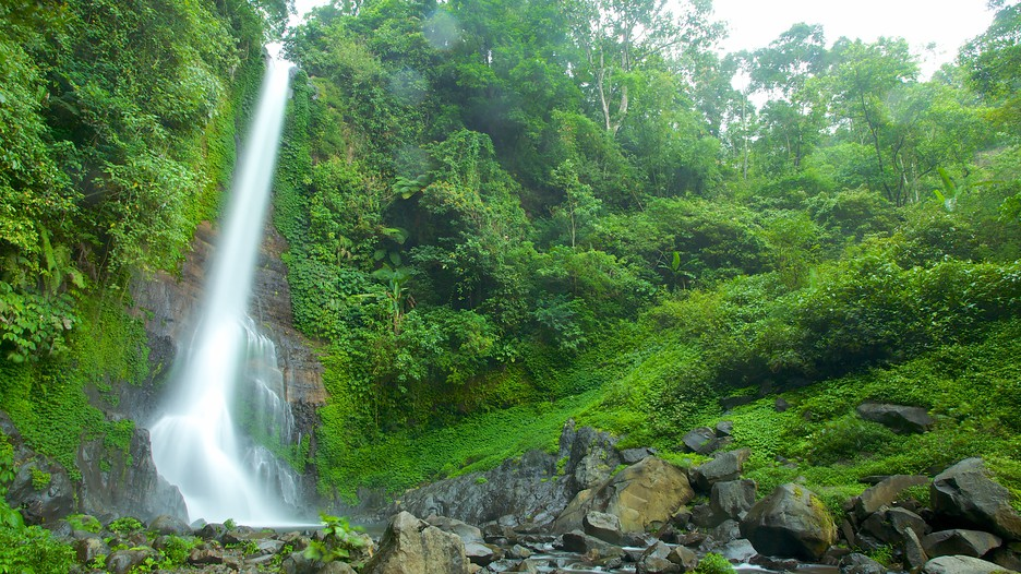 Image Result For Cheap Bali Holiday Packages Including Flights
