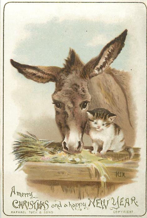 Donkey And Cat At Manger Look Straight Ahead TuckDB Ephemera