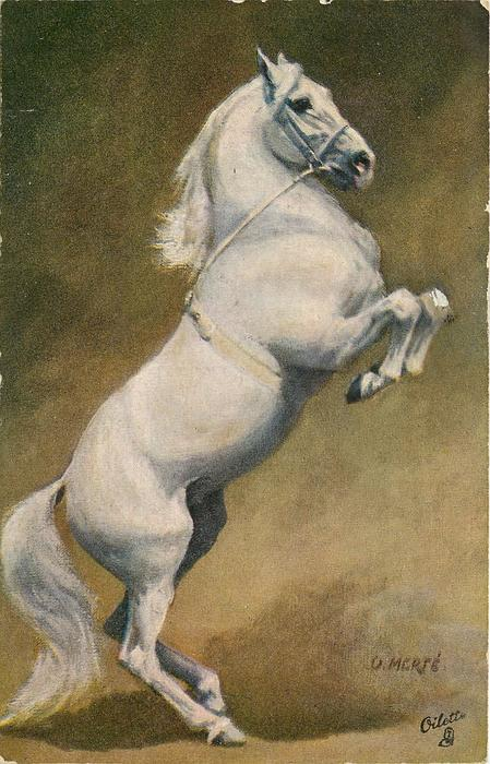 Image Result For Horse Logo Design