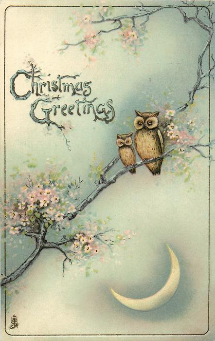 CHRISTMAS GREETINGS Two Owls In Blossom Tree Quarter Moon