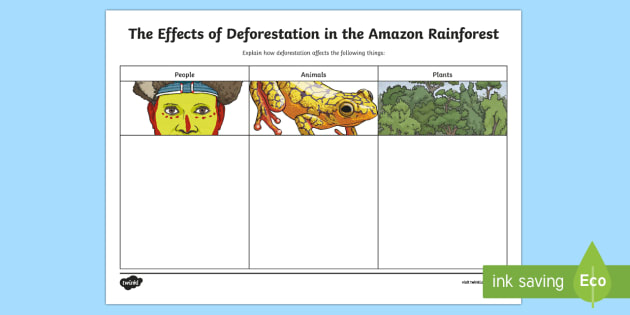 The Effects Of Deforestation In The Amazon Rainforest