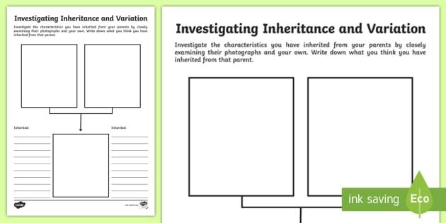 Investigating Inheritance And Variation Worksheet
