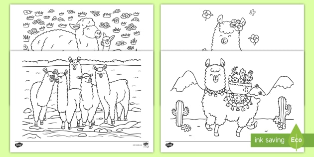 Llama Coloring Pages Teacher Made