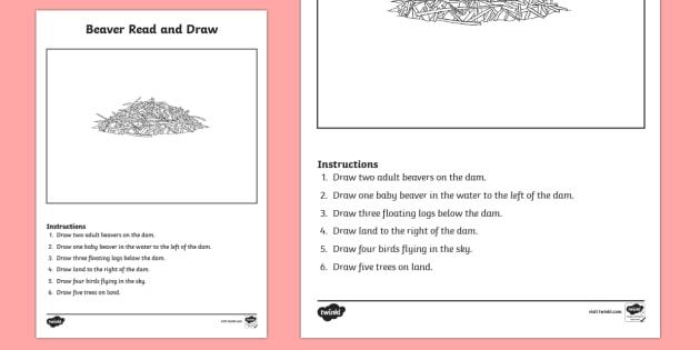 Canadian Beaver Read And Draw Worksheet Worksheet