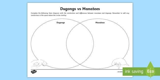 Dugong Vs Manatee Worksheet Worksheet