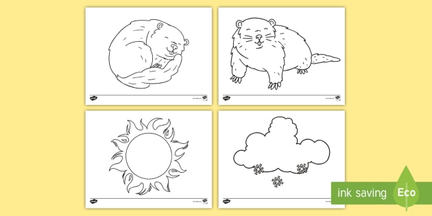 Groundhog Day Coloring Sheets Teacher Made
