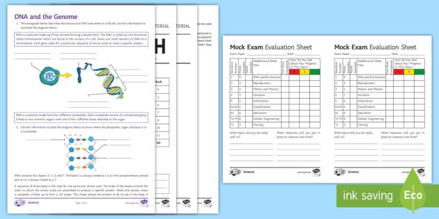 AQA GCSE Inheritance, Variation and Evolution Higher Assessment Pack (Separate)