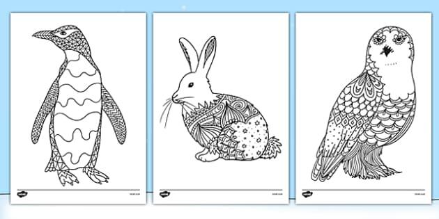 Polar Animals Mindfulness Colouring Sheets Arctic